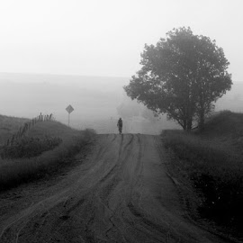 Perseverance  by Ryan Trullinger - Transportation Bicycles ( black and white, road, gravel, landscape, bicycle )