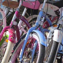 Neatly parked by Wendy Richards - Transportation Bicycles ( bycicles, transport, bikes, cycling, tyres, childrens,  )