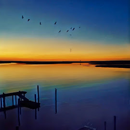 Sunset Fly By by Ann J. Sagel - Instagram & Mobile iPhone ( sunset, iphone, corson's bay, ann sagel )