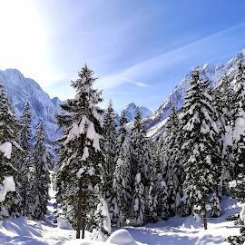 Winter fairytale by Zoja Klinar - Landscapes Mountains & Hills