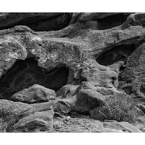 Valley of Fire by Bob Stafford - Black & White Landscapes ( nature art, natural light, rock formations, black and white, valley of fire )