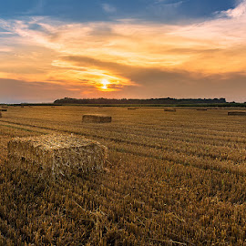 After the Harvest by Dani Turnšek - Landscapes Prairies, Meadows & Fields ( sunset, slovenia, bales, summer, harvest, landscape, whey )