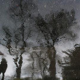 Scene from Winter by Gianni Pezzotta - City,  Street & Park  Street Scenes