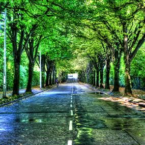 by Jong Onilcny - City,  Street & Park  Street Scenes