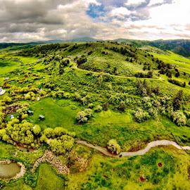 Green hills by Brian Allison - Landscapes Prairies, Meadows & Fields (  )