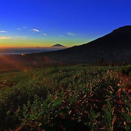 by Benny Sugiarto Eko Wardojo - Landscapes Mountains & Hills