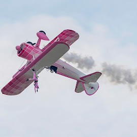 Upside down by Martin Namesny - Transportation Airplanes ( on the wing, airshow, woman, stuntman, aircraft, airplane, show, stuntmen, upside down )