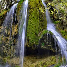 by Miloš Karaklić - Nature Up Close Natural Waterdrops (  )