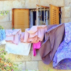CLOTHES LINE by Jody Frankel - Artistic Objects Clothing & Accessories (  )