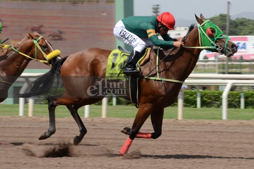 She's Hot (Lido Palace) se adjudica Condicional (1000m-Arena-MONT).
