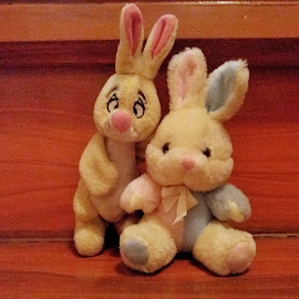 closer by Erl de Jose - Artistic Objects Toys ( stuffed animals, bunny, toys, artistic objects, objects )
