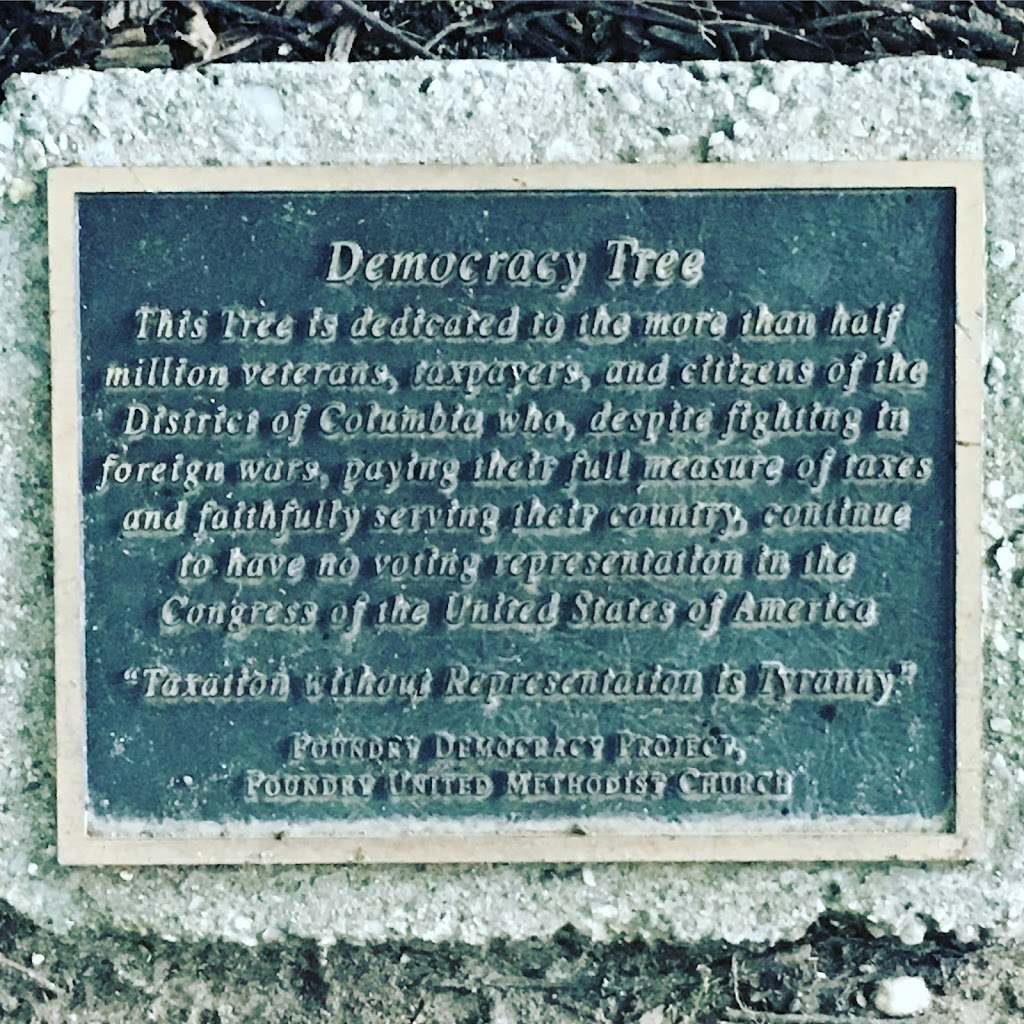 At the base of a strudy trunkon Washington, DC's tree-lined New Hampshire Ave, a small plaque sits unobtrusively among scrub and mulch. The plaque is small, you'd miss it if you weren't looking. It ...