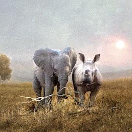 Africas Future by Bjørn Borge-Lunde - Digital Art Animals ( savannah, wild animal, wilderness, animals, nature, elephant, wildlife, africa, rhino )