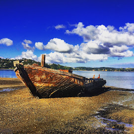 Boat on the Beach by Doug MacAskill - Novices Only Objects & Still Life ( waiheke, auckland, wreck, beach, boat, new zealand )