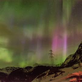 Aurora dancing by Knut Saglien - Landscapes Weather ( aurora borealis, polarlights, night shot, norway )