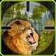 Lion Hunting Season 3D