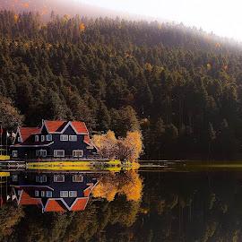 Reflection by TC Gökhan Uysal - Landscapes Forests (  )