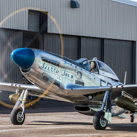 Sierra Sue by Andy Chow - Transportation Airplanes ( mustang, p51, sierra sue, warbird )