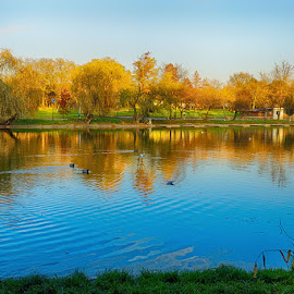 An autumnal day by Radu Eftimie - City,  Street & Park  City Parks ( bucharest, trees, lake, romania, park of the youth )
