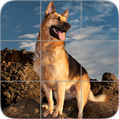 Dogs Puzzle: German Shepherd APK Descargar