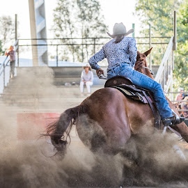 Let it Fly by Sarah Sullivan - Sports & Fitness Other Sports ( barrel racing, speed, dust, dalby, sarah sullivan photography )