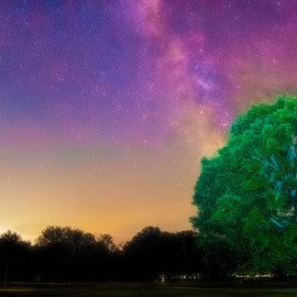 Milky Way over the green by Chris Cavallo - Landscapes Starscapes ( milky way, nightscape, light painting, long exposure, night photography )