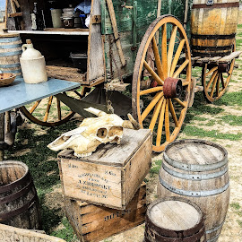 Chuck Wagon by Judy Rosanno - Transportation Other ( cowboy, cattle drive, chuck wagon, lbj, texas, wagon, western, historical, antique )