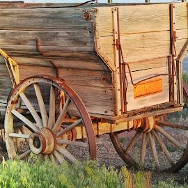 by Lucretia Bittner - Transportation Other