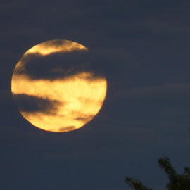 Full Moon by Richard Crosier - Landscapes Cloud Formations ( clouds, nature, fullmoon, wildlife, landscapes )