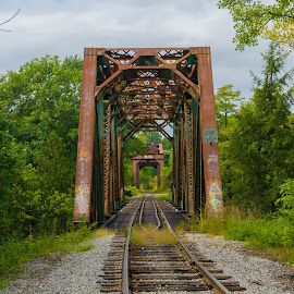 Saturated Bridge by Ben Sheed - Buildings & Architecture Bridges & Suspended Structures ( birdge, trust, green, symmetry, train )