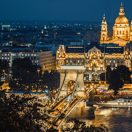 Budapest at Night by Mo Kazemi - Buildings & Architecture Public & Historical ( budapest hungary, european, night, danube, cityscapes, hungary, chain bridge, buildings, nightscape, cityscape, budapest, night photo, bridge, travel, europe, landscape, architecture, night photography )