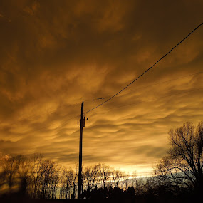 Mamatus clouds by Amanda Burton - Nature Up Close Other Natural Objects ( clouds, sky, weather )