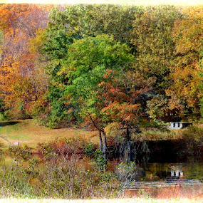 Autumn Reflection by Nancy Sadowski - Digital Art Places ( reflection, peaceful, autumn, colors, trees )