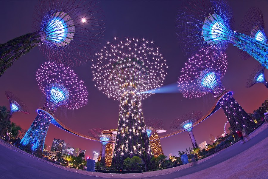 Super Trees by Sim Kim Seong - Buildings & Architecture Other Exteriors