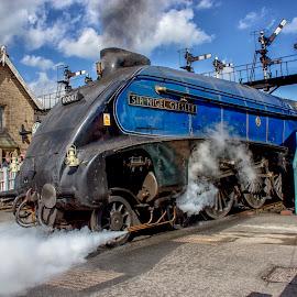 Sir Nige lets off steam by Dez Green - Transportation Trains ( railway, steam train, historic, trains, steam,  )