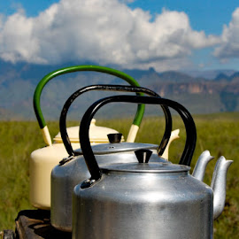 Moyntain Kettle by Morne Kotze - Artistic Objects Antiques ( artistic objects )