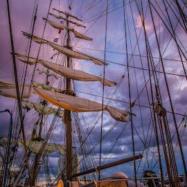 Tall Ship by Simon Ashington - Transportation Boats ( parade, belfast, ship, ships, race )
