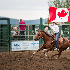 Fast Flag Canada by Craig Lybbert - Sports & Fitness Rodeo/Bull Riding ( flag, canada, horse, rodeo, cowgirl, flag-bearer )
