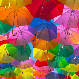 Umbrella Sky by Sofia Quintela - City,  Street & Park  Street Scenes ( colors, street, portugal )