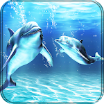 Dolphins Live Wallpaper Icon