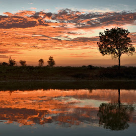 by Trudy Mader - Landscapes Sunsets & Sunrises
