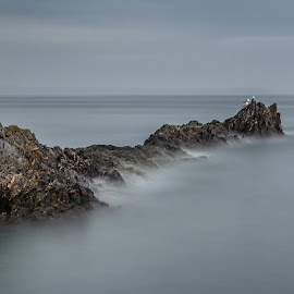 Rocks To Sea by Barry Smith - Landscapes Waterscapes ( landscapes, rocks, ocean, waterscape, long exposure )