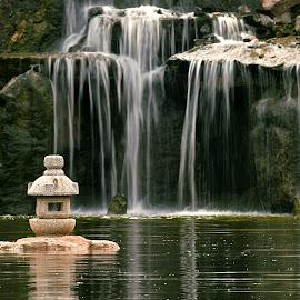 Japanese Garden by Shawn Thomas - City,  Street & Park  City Parks