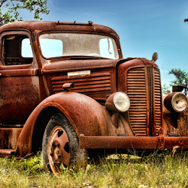 by Judy Rosanno - Transportation Automobiles (  )