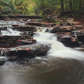 Waterfall  by H Scott Burd - Landscapes Waterscapes ( ricketts glen state park )