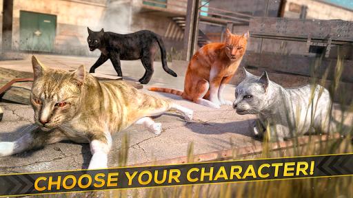 3D Cat Simulator Game For - screenshot