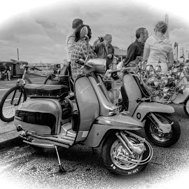 Scooters &Mods  by Mark West - Transportation Motorcycles