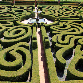 Classic garden by Gil Reis - Nature Up Close Gardens & Produce ( history, nature, palaces, gardens, travel, places, portugal )