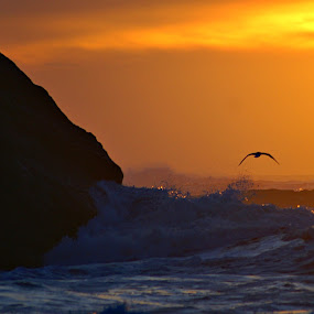 Shadows on the waves by Gaylord Mink - Landscapes Waterscapes ( water, sunset, waves, ocean, shadows,  )