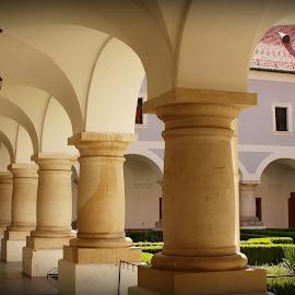 monastery  by Miroslav Bičanić - Buildings & Architecture Places of Worship ( tranquil, corridor, monastery, columns, garden, franciscan )